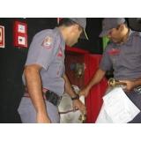 empresa de vistoria AVCB para edifícios residenciais na Itaquera